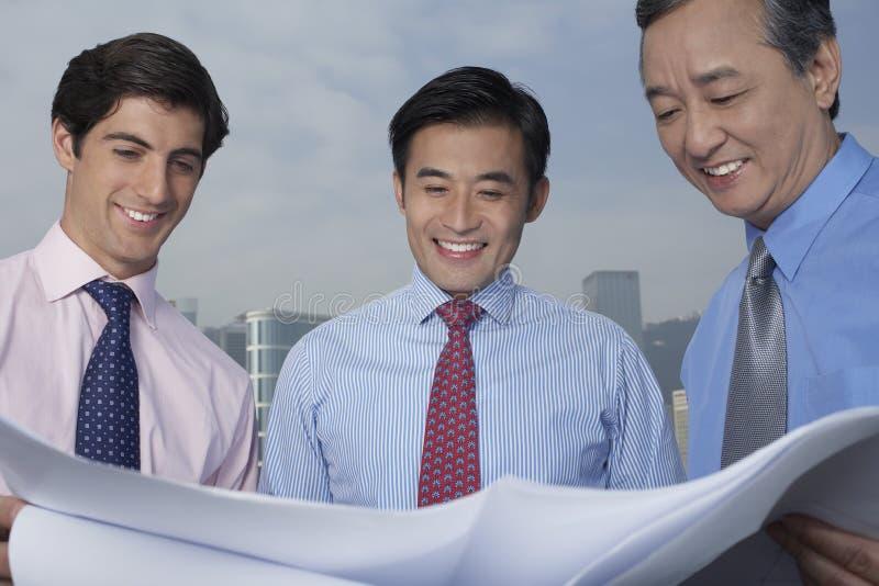 Affärsmän som ser ritningen arkivfoto