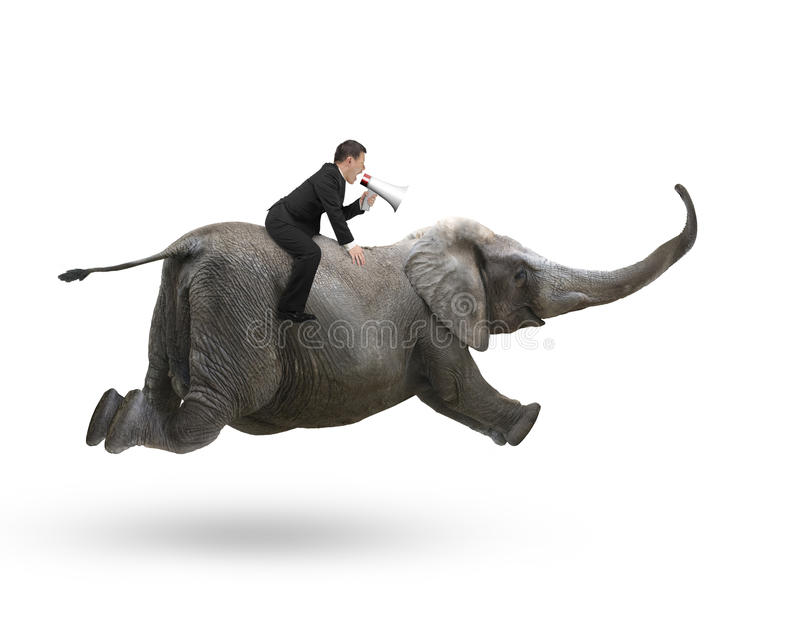 Affärsman med att använda högtalareridning på elefant royaltyfri foto