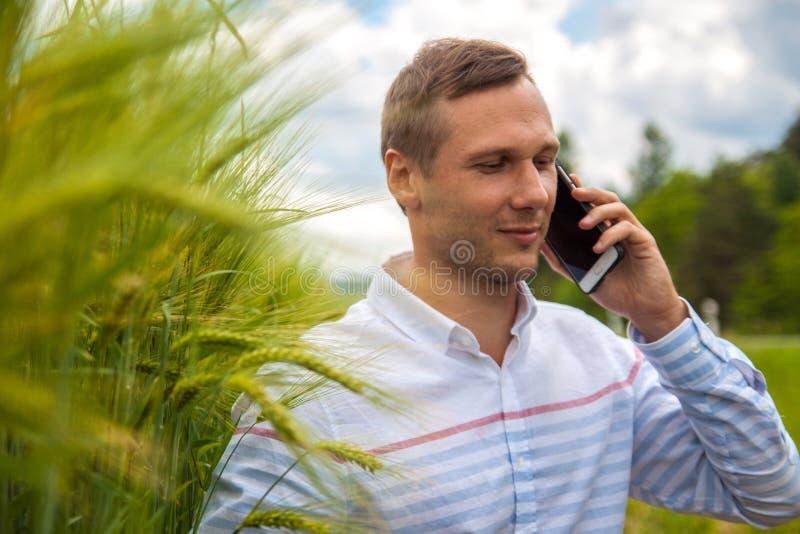Affärsman med bärbar dator- och smartphonearbete i vetefält i bakgrund för blå himmel royaltyfri fotografi