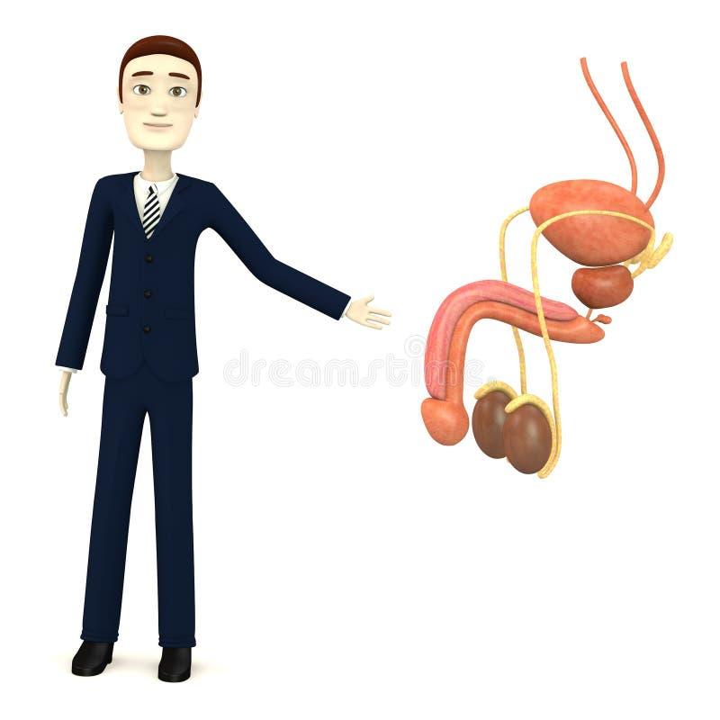 Affärsman med det male reproduktiva systemet vektor illustrationer