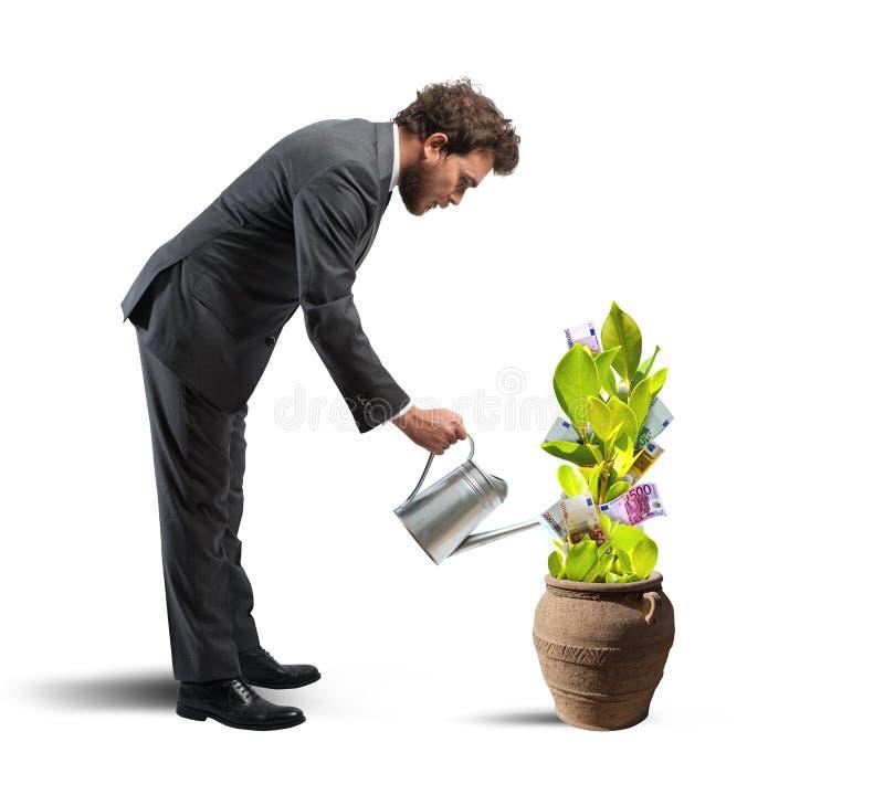Affärsman med en växt av pengar royaltyfri foto