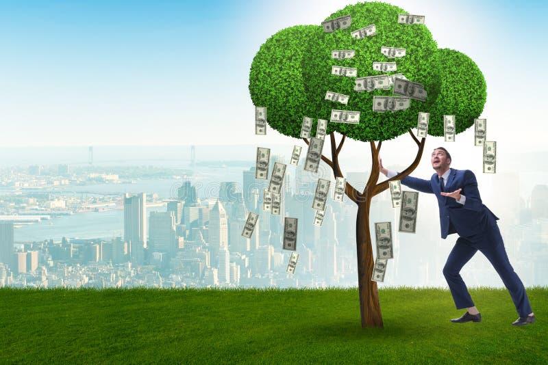 Affärsman med pengarträdet i affärsidé royaltyfria bilder