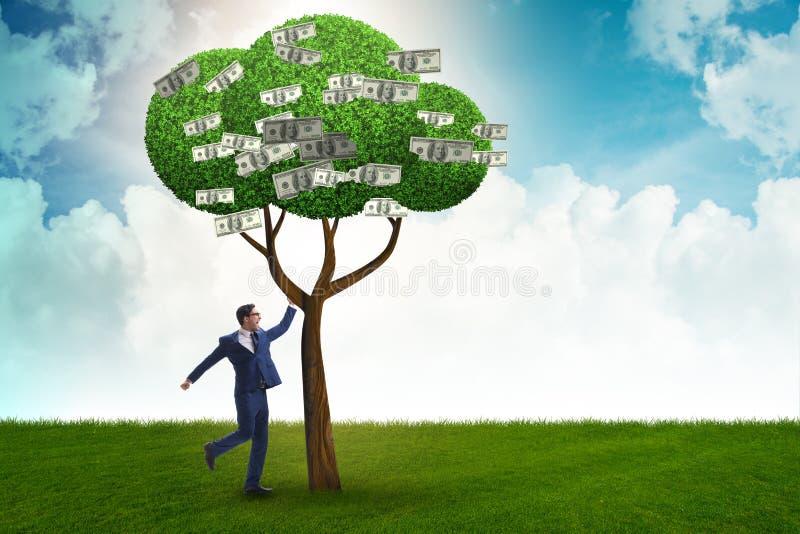 Affärsman med pengarträdet i affärsidé fotografering för bildbyråer