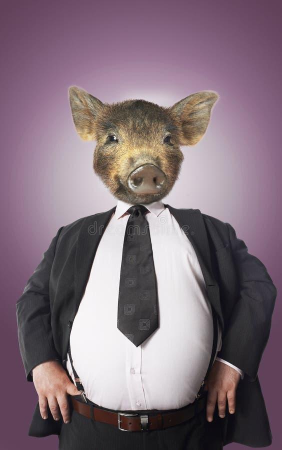 Affärsman med svinhuvudet arkivfoto