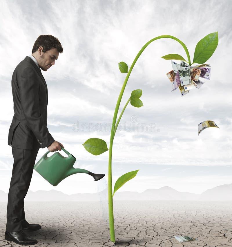 Affärsman och en växt av pengar