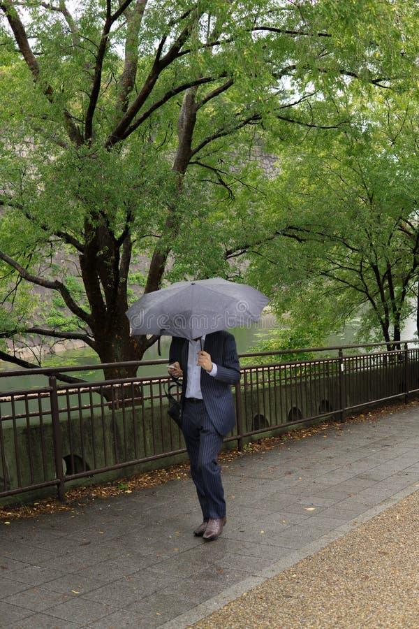 Affärsman som går framåtriktat i den hållande smartphonen och paraplyet för parkera arkivbild