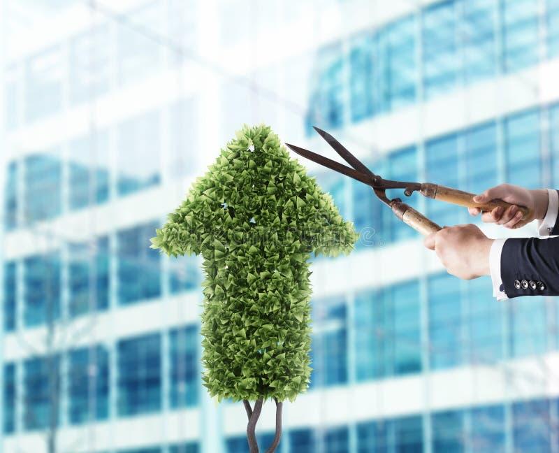 Affärsman som klipper och justerar en växt som formas som en pilstatistik Begrepp av det startup företaget framförande 3d royaltyfri foto