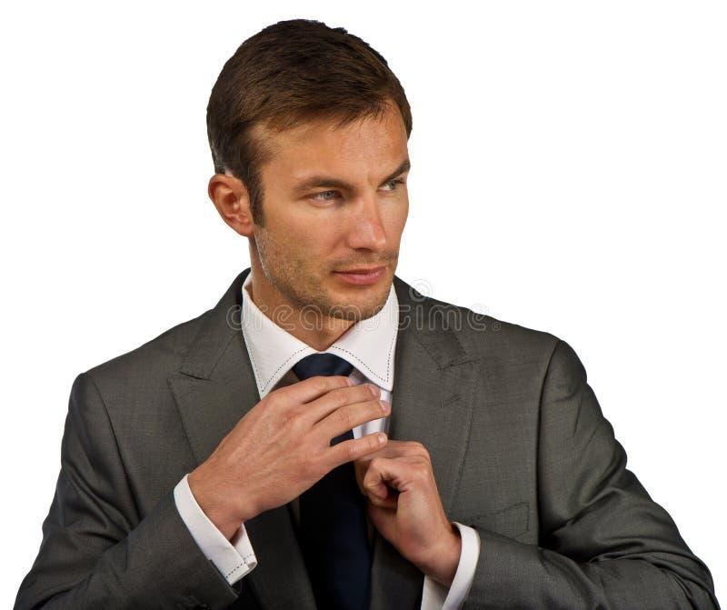 Download Affärsmannen Korrigerar En Dräkt Arkivfoto - Bild av ledarskap, säkert: 27288172