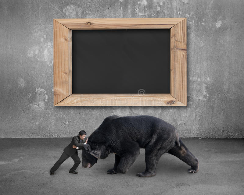 Affärsmanstridighet mot svart björn med den tomma svart tavla royaltyfria foton