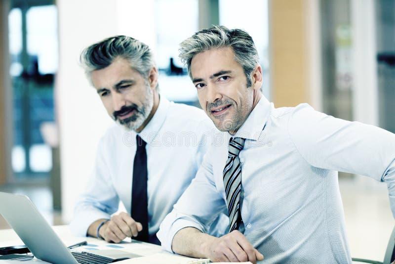 Affärspartners som möter att arbeta på bärbara datorn arkivbilder