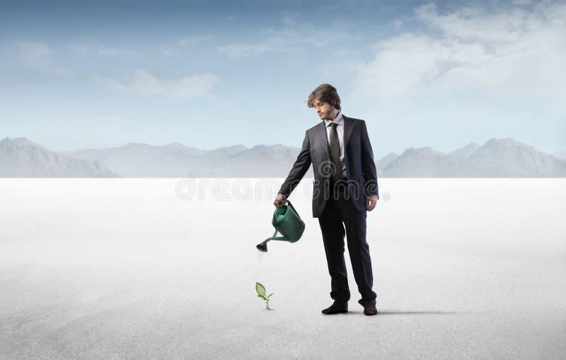Affaires vertes photo libre de droits