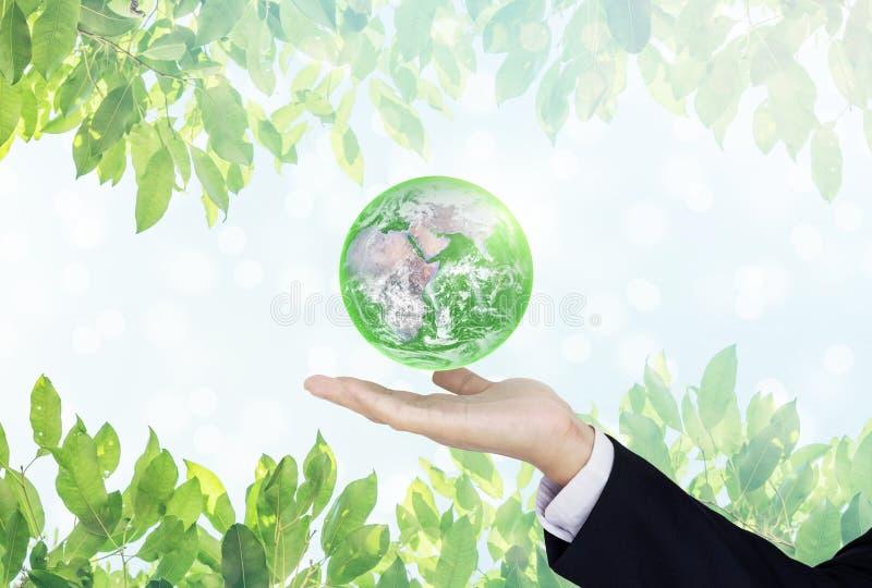 Affare globale verde ed ambientale Globo della tenuta della mano dell'uomo d'affari con il fondo delle foglie L'elemento di quest immagine stock libera da diritti