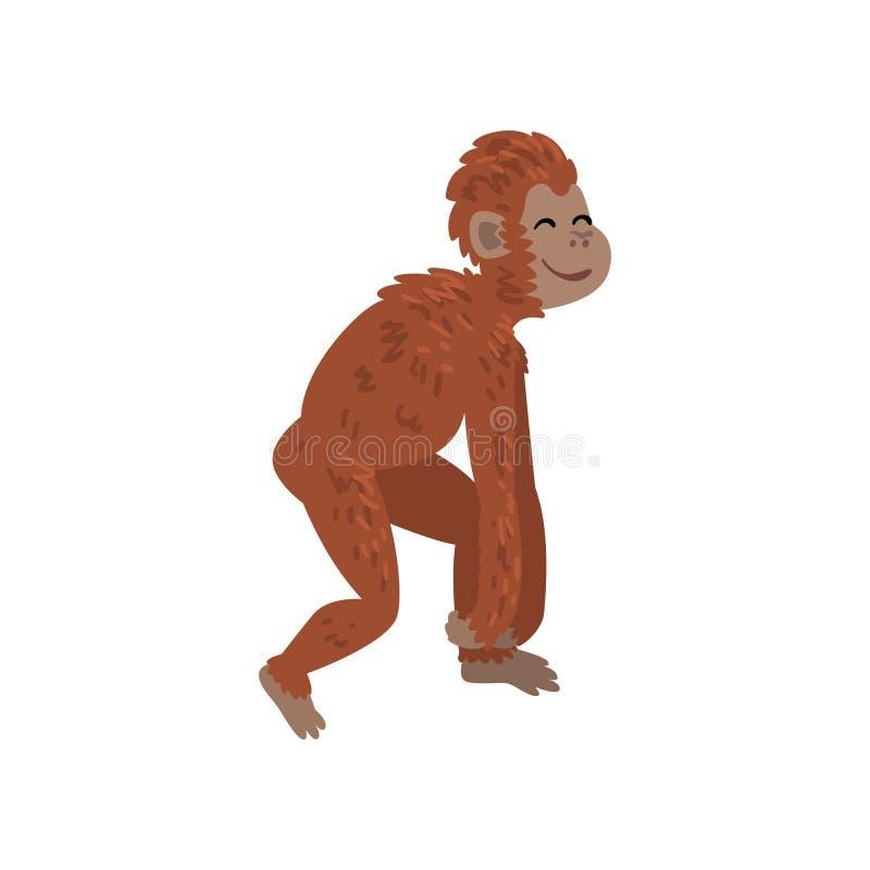 Affe, Affe-Tierfortschritt, Biologie-menschliche Entwicklungs-Stadium, Evolutionsprozess der Frauen-Vektor-Illustration vektor abbildung