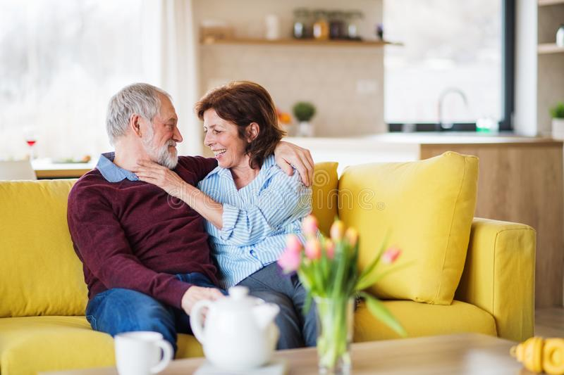 An affectionate senior couple in love sitting on sofa indoors at home. An affectionate senior couple in love sitting on sofa indoors at home, talking stock image