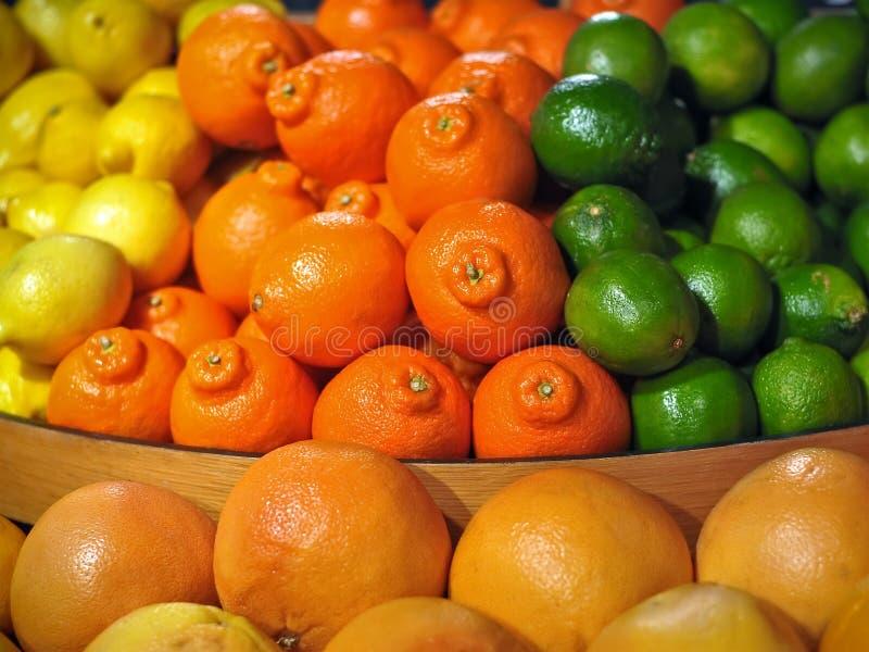 Affichage d'agrumes avec des oranges, citrons, limettes images stock