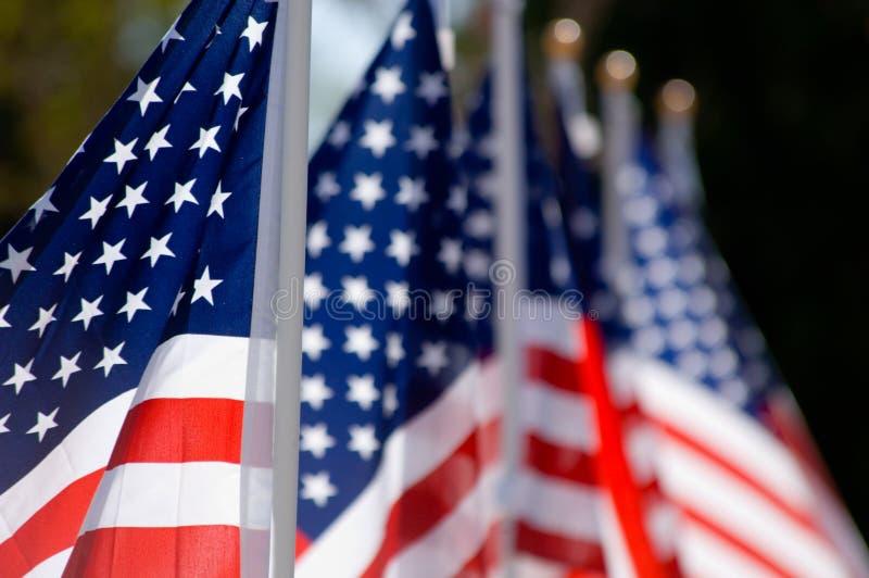 Affichage d'indicateur américain en l'honneur de jour de vétérans images stock