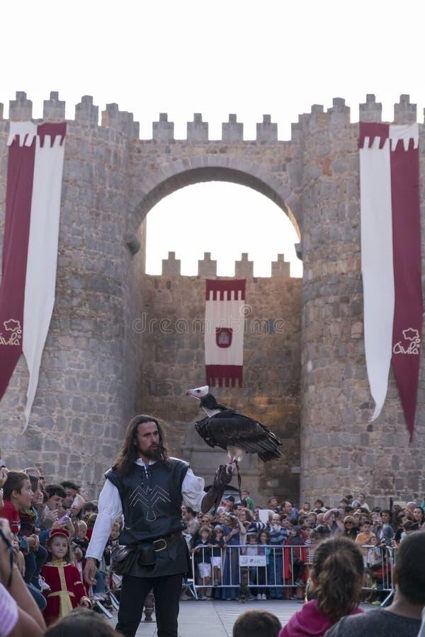 Affichage de fauconnerie sur un marché médiéval de  vila de à photographie stock libre de droits