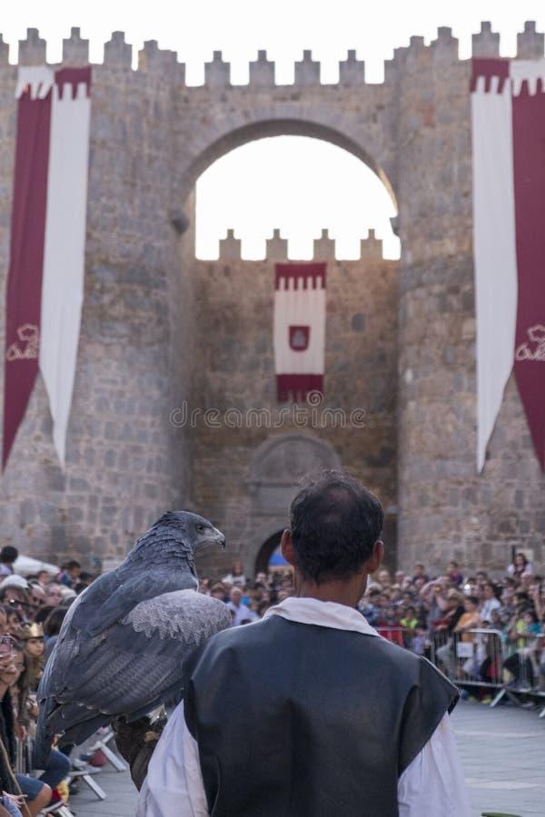 Affichage de fauconnerie sur un marché médiéval de  vila de à photo stock