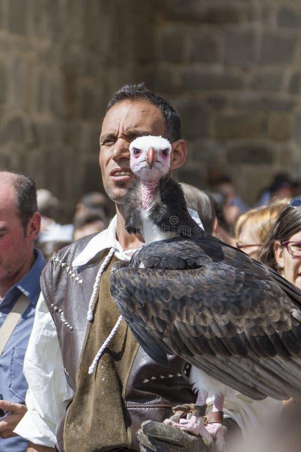Affichage de fauconnerie sur un marché médiéval de  vila de à photos stock