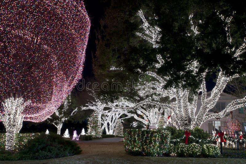 Affichage de lumière de Noël image stock