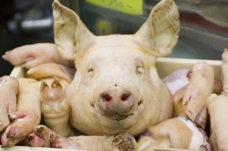 Affichage de porc images libres de droits