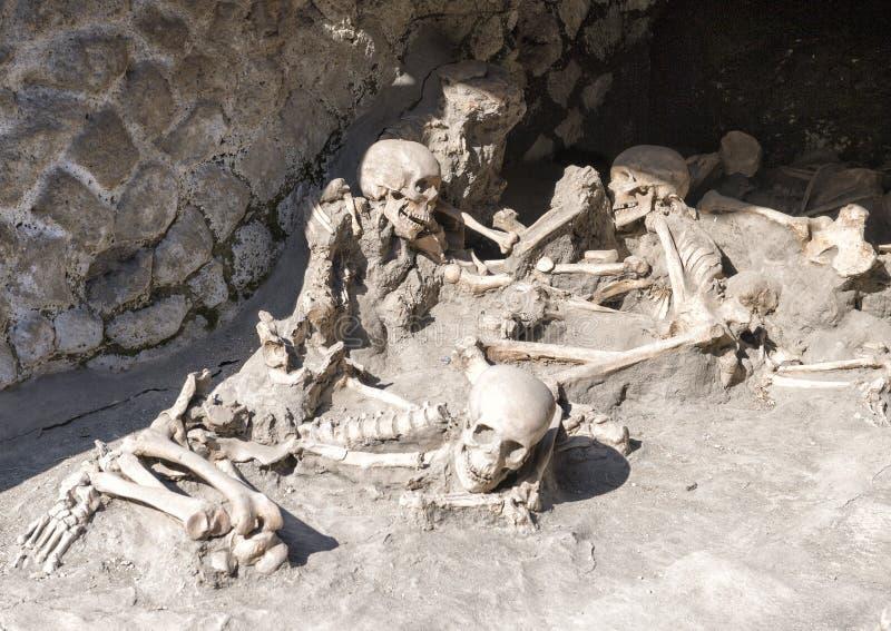 Affichage des squelettes humains, Parco Archeologico di Ercolano image libre de droits