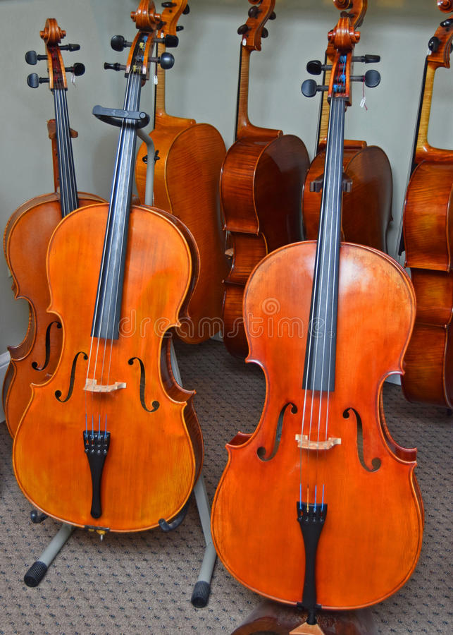 Affichage des violoncelles dans la boutique de musique de Raleigh images stock