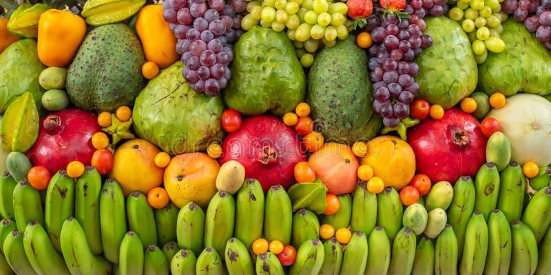 Affichage exotique de fruits image libre de droits