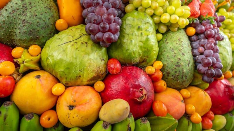 Affichage exotique de fruits photo libre de droits