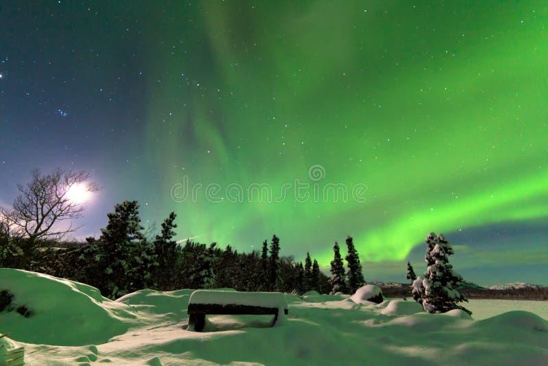 Affichage intense des borealis de l'aurore de lumières du nord image libre de droits