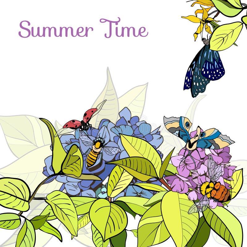 Affiche avec les feuilles, les fleurs et les insectes verts illustration stock