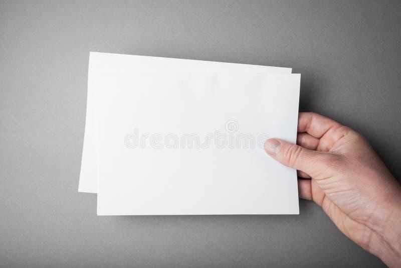 Affiche d'insecte de blanc de maquette à disposition sur gris pour remplacer votre conception photographie stock libre de droits