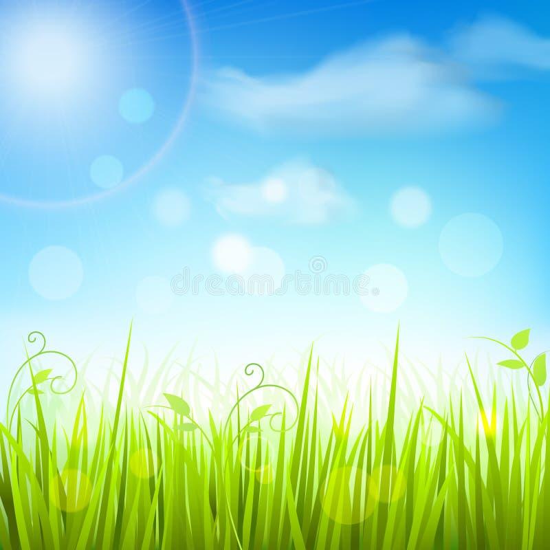 Affiche de ciel bleu d'herbe de pré de ressort illustration de vecteur