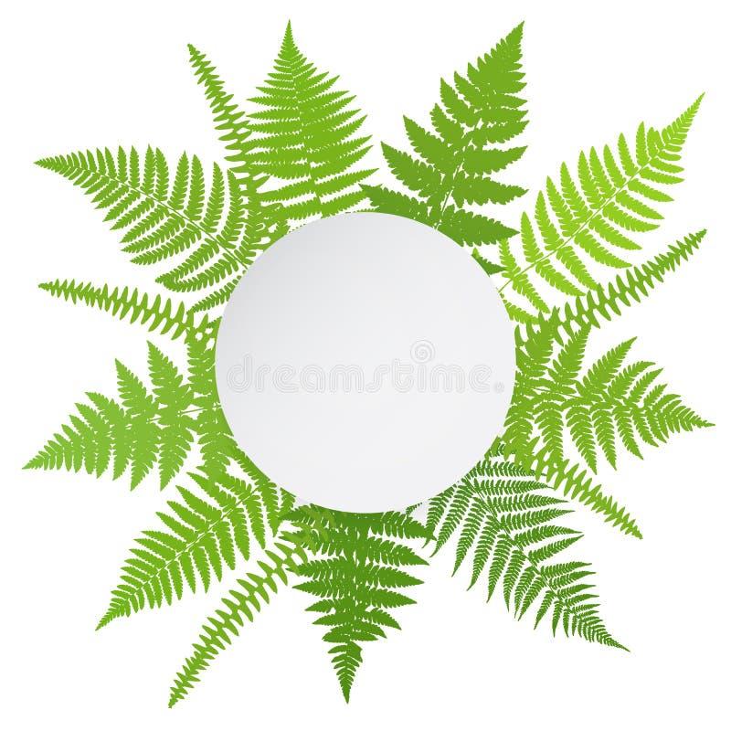Affiche de jungle Fond de fronde de fougère illustration de vecteur