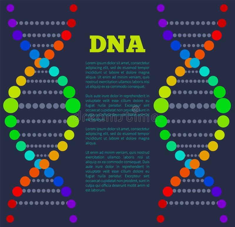 Affiche de nucléotides de chaîne d'acide désoxyribonucléique d'ADN illustration de vecteur