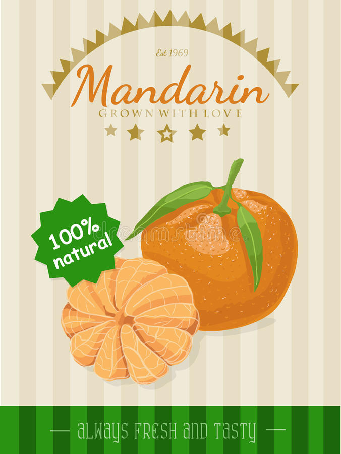 Affiche de vecteur avec une mandarine illustration de vecteur