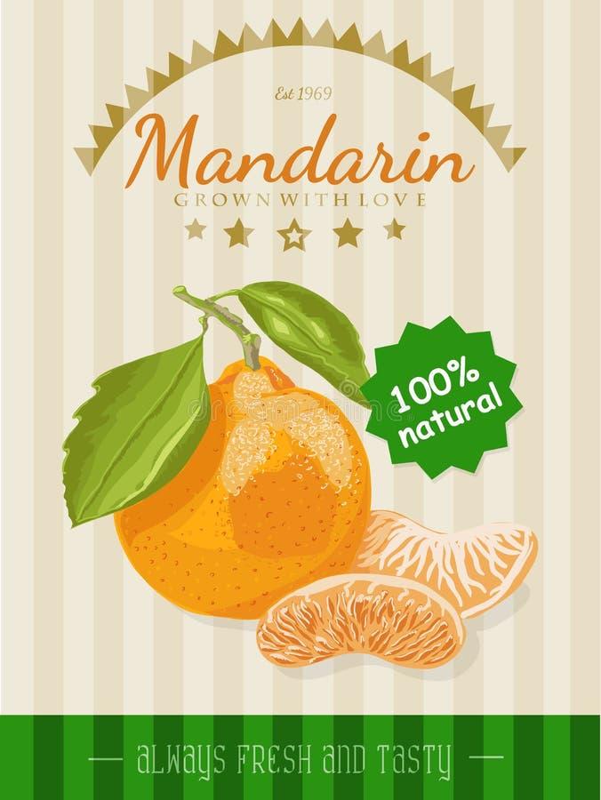 Affiche de vecteur avec une mandarine illustration libre de droits