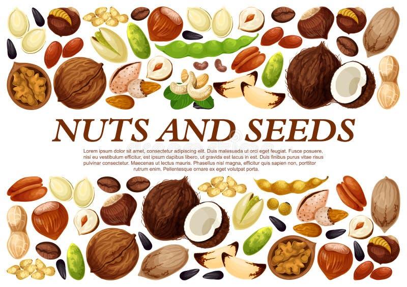 Affiche de vecteur des écrous et des graines de fruit illustration libre de droits