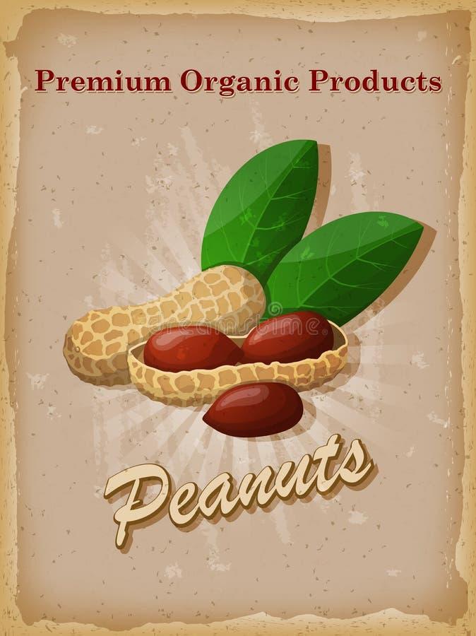 Affiche de vintage d'arachides Illustration de vecteur illustration libre de droits