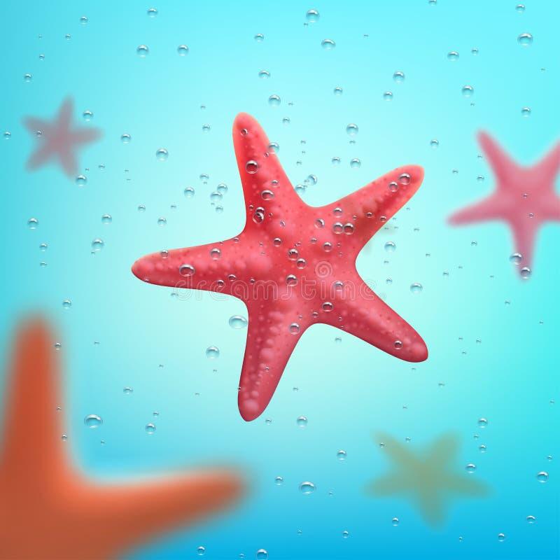 Affiche de voyage d'océan d'été ou d'étoiles de mer de vacances illustration de vecteur