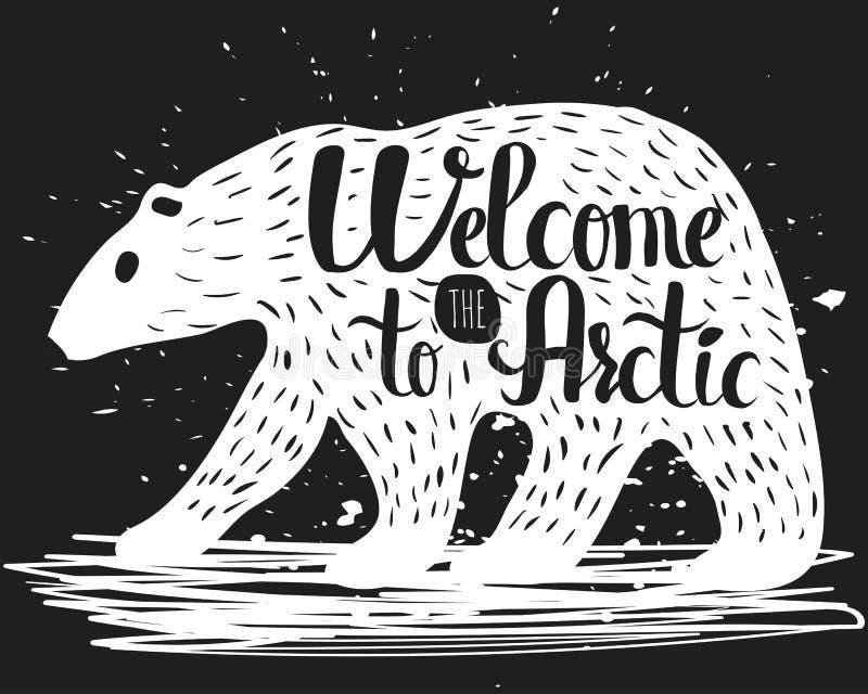 Affiche handlettering de vintage sur le sujet du tourisme La silhouette d'un ours blanc avec un texte au sujet de l'invitation à illustration libre de droits
