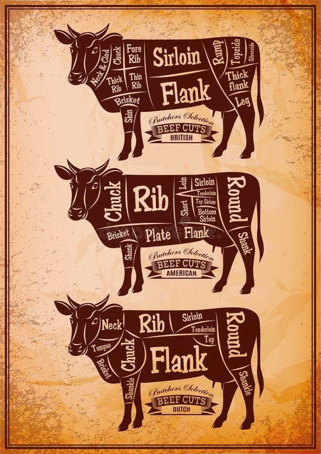 Affiche met drie verschillende diagram scherpe koeien royalty-vrije illustratie