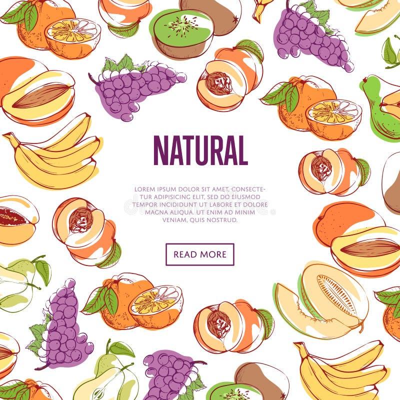 Affiche naturelle de vecteur de fruits tropicaux illustration de vecteur