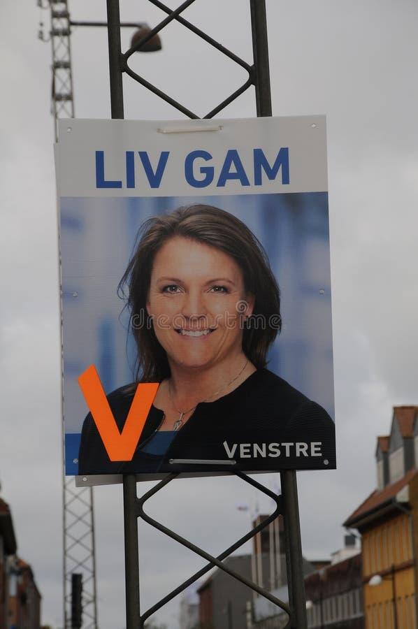 affiches d'élection de conseil dans le copenahgen Danemark photos libres de droits