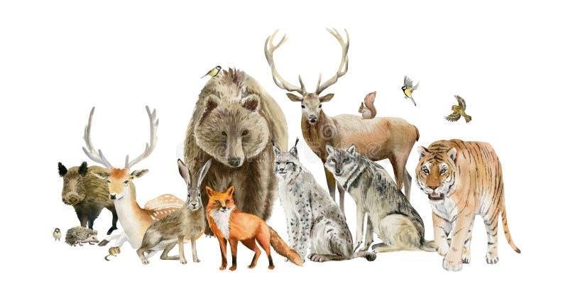 Affisch av drog djura cliparts för vattenfärg hand royaltyfri illustrationer