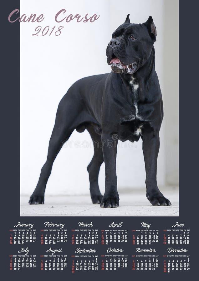 Affisch för väggkalender för 2018 år med fotohunden Veckan startar söndag arkivfoto