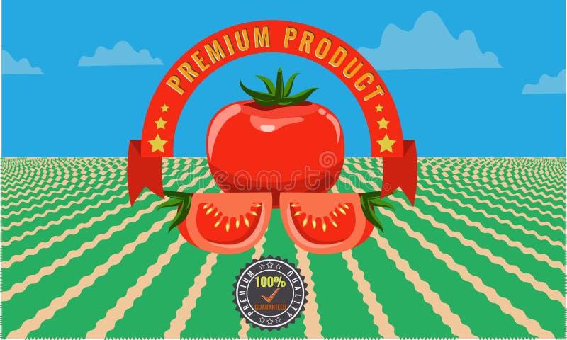 Affischen för tomattappningadvertizingen - belägga med metall tecknet och märk designen royaltyfri illustrationer