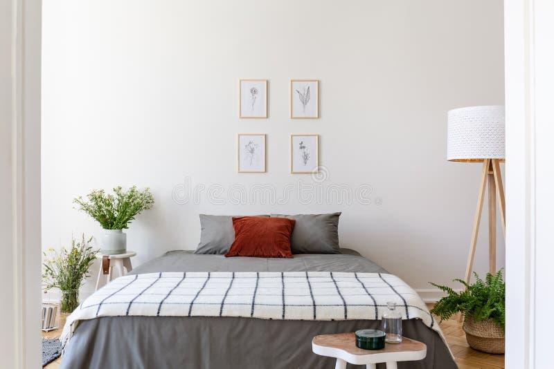 Affischer ovanför grå färger bäddar ned med den mönstrade filten i sovruminterio royaltyfri bild