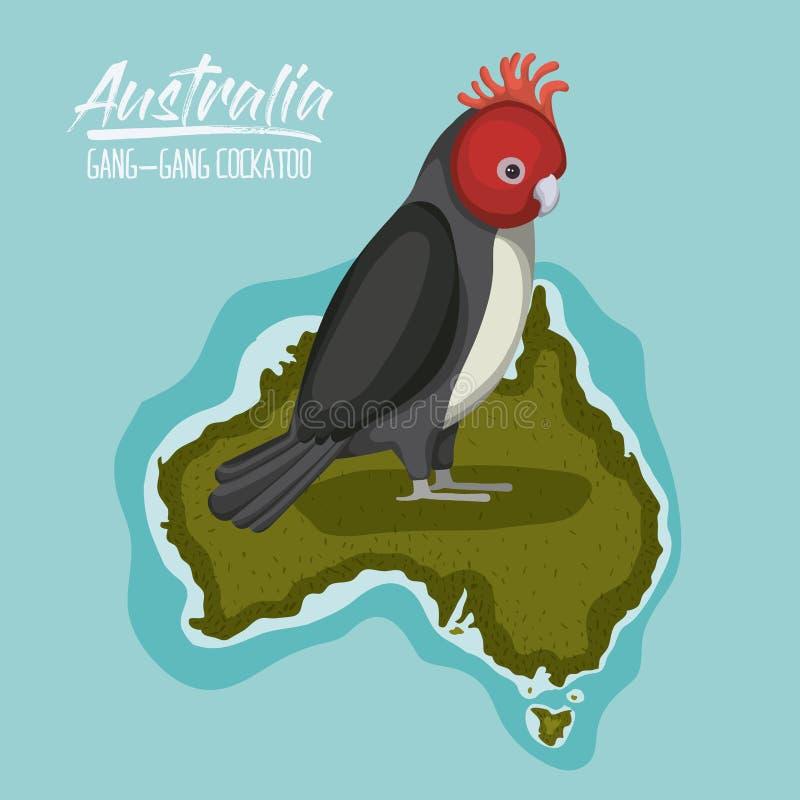 Affischliga-liga kakadua i den Australien översikten i gräsplan som omges av havet stock illustrationer