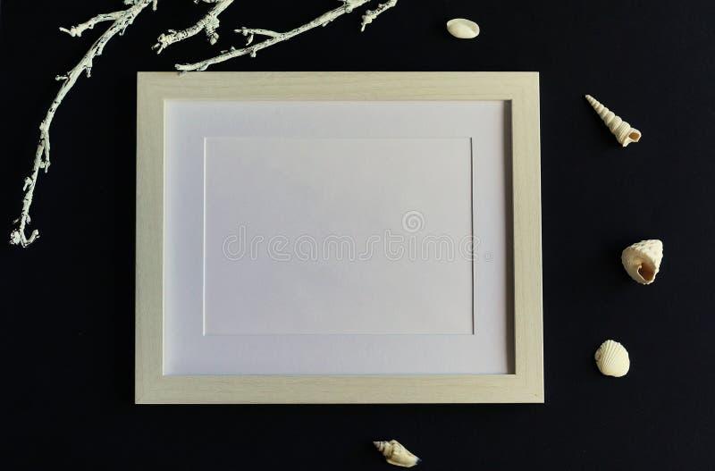 Affischrammodell, bästa sikt, snäckskal på svart bakgrund Lekmanna- lägenhet kopiera avstånd royaltyfri bild